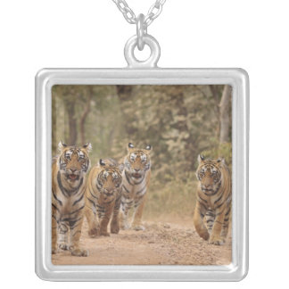 Royal Bengal Tigers on the track, Ranthambhor 6 Silver Plated Necklace