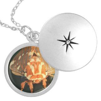 Royal Chestnut Secret Moth Necklace