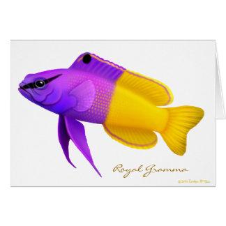 Royal Gramma Coral Reef Fish Card