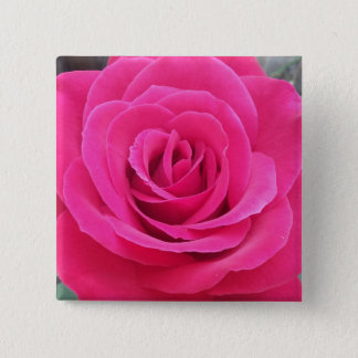 Royal Red Rose 2 Inch Square Button