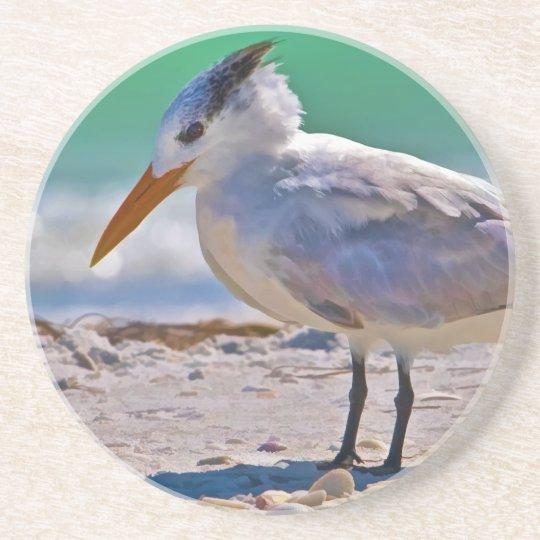 Royal Tern Bird Coaster