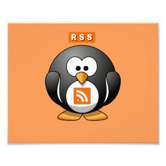 RSS Penguin Orang Background Photograph