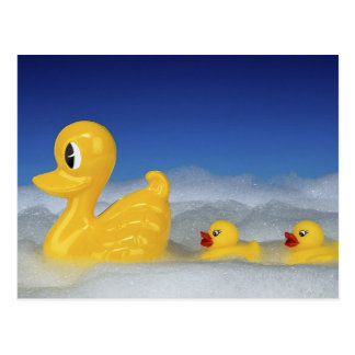 Rubber Duck Family Postcard