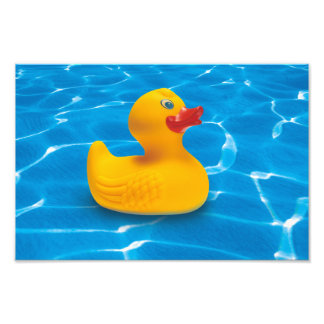 rubber duck photographic print