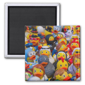 Rubber Ducks in Costume Magnet