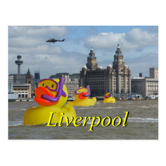 Rubber Ducks On The Mersey Postcard