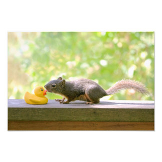 Rubber Ducky and Squirrel Kissing Photo Art
