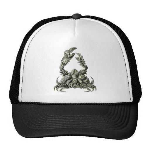 Rubble Crab Mesh Hats