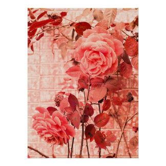 Rubious Roses Poster