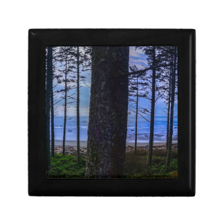 Ruby Beach sea shore Gift Box