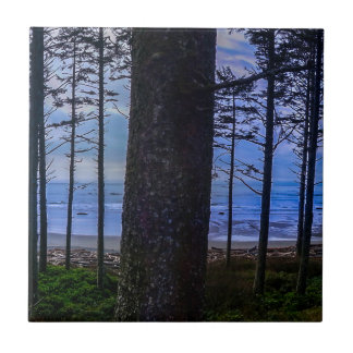 Ruby Beach sea shore Tile