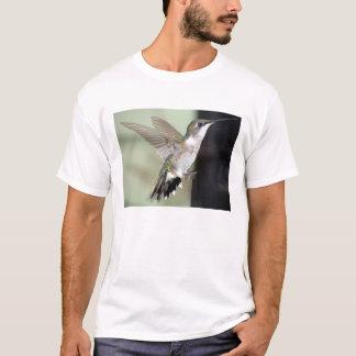 Ruby-Throated Hummingbird 2003-0069 T-Shirt