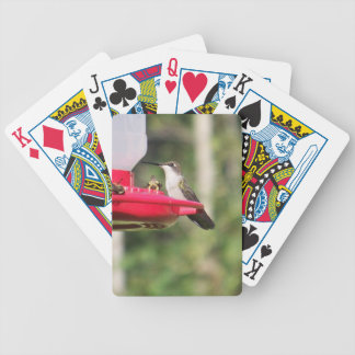 Ruby Throated Hummingbird Bicycle Playing Cards