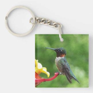 Ruby-Throated Hummingbird Bird Photography Keychain