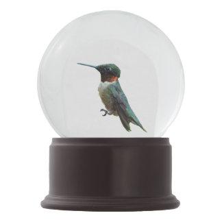 Ruby-Throated Hummingbird Bird Photography Snow Globe