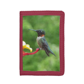 Ruby-Throated Hummingbird Bird Photography Tri-fold Wallet