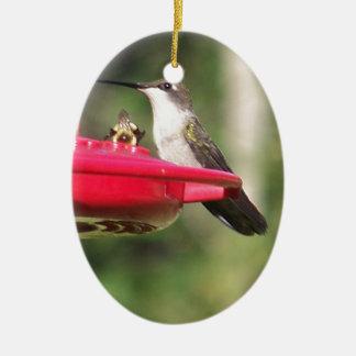 Ruby Throated Hummingbird Ceramic Ornament