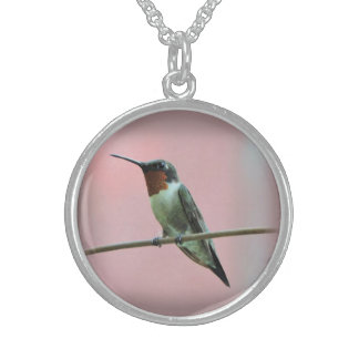 Ruby Throated Hummingbird, Close Up Photograph Sterling Silver Necklace