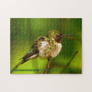 Ruby Throated Hummingbird Puzzle