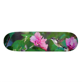 Ruby Throated Hummingbird Skateboard