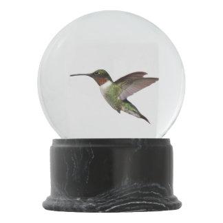 Ruby Throated Hummingbird Snow Globe