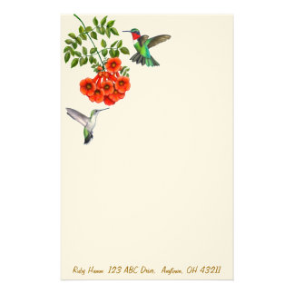 Ruby Throated Hummingbirds in Red Trumpet Vines St Stationery