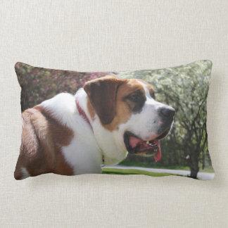 Ruby's Springtime Pillow