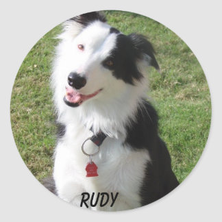 RUDY CLASSIC ROUND STICKER