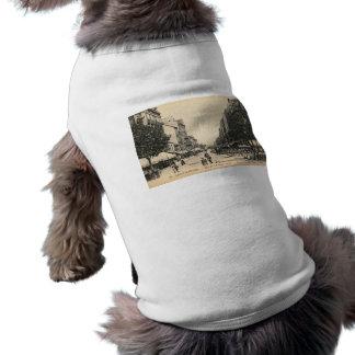 Rue de l' Admiral Courbet, Saint Nazaire, France Pet T Shirt