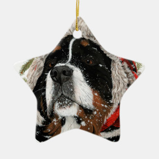 Ruff Winter Ceramic Star Ornament