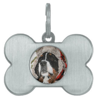 Ruff Winter Pet ID Tag