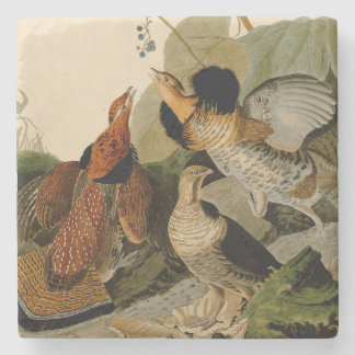 Ruffed Grouse Game Bird Audubon Stone Coaster