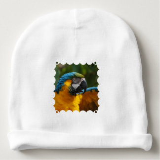 Ruffled Blue and Gold Macaw Baby Beanie