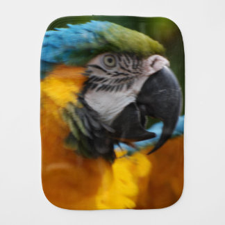 Ruffled Blue and Gold Macaw Burp Cloths