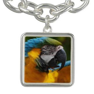 Ruffled Blue and Gold Macaw Charm Bracelets