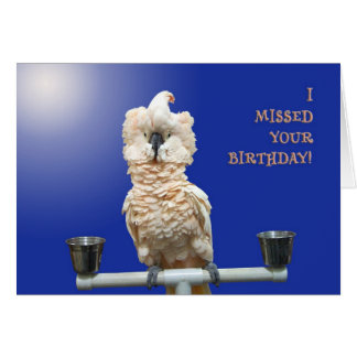 Ruffled Feathers Card