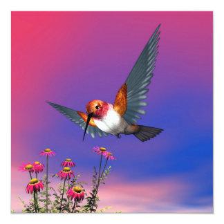 Rufous hummingbird - 3D render Card