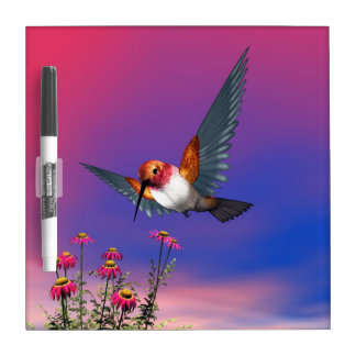 Rufous hummingbird - 3D render Dry-Erase Whiteboard