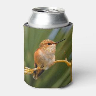 Rufous Hummingbird at Rest Can Cooler