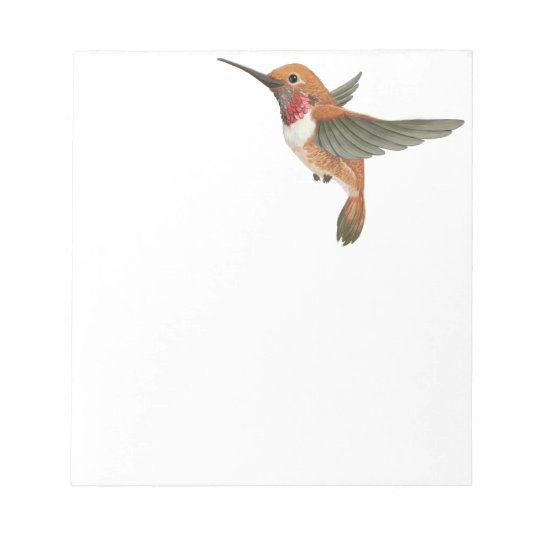 Rufous Hummingbird Notepad