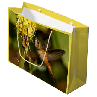 Rufous Hummingbird Sipping Kniphofia Nectar Large Gift Bag