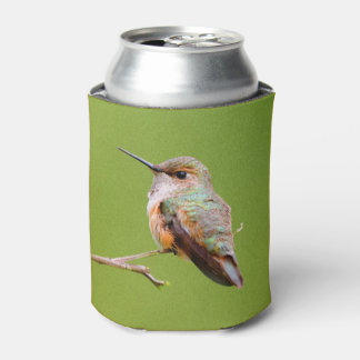 Rufous Hummingbird Sitting in the California Lilac Can Cooler
