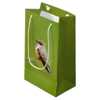 Rufous Hummingbird Sitting in the California Lilac Small Gift Bag