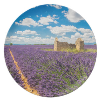 Ruin in Lavender Field, France Party Plate