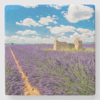Ruin in Lavender Field, France Stone Beverage Coaster