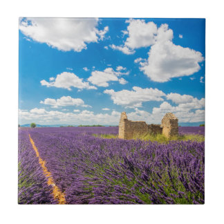 Ruin in Lavender Field, France Tiles