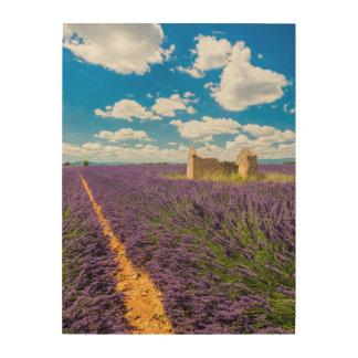 Ruin in Lavender Field, France Wood Wall Art
