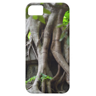 Ruins of a temple lost in a lush jungle case for the iPhone 5