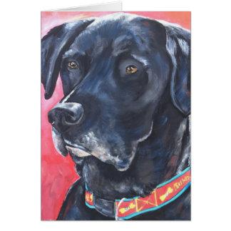 """Rumba"" - Pet Portrait Notecard"