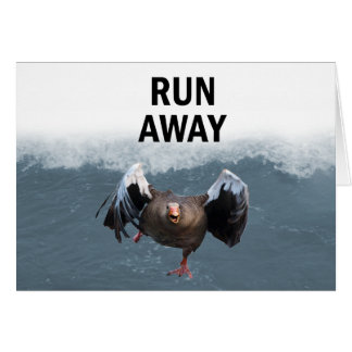 Run away card